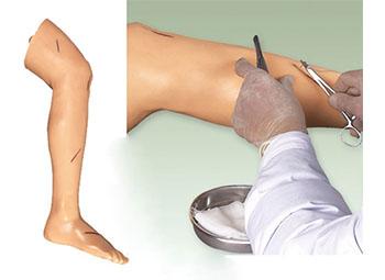 高级外科腿部缝合训练模型