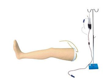 高级静脉输液腿模型