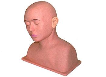 高级耳部冲洗模型