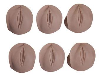 产前宫颈变化模型,产前宫颈变化与产道关系模型