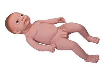 婴儿模型,高级出生婴儿模型