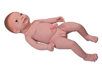 出生婴儿模型,高级出生婴儿附脐带模型