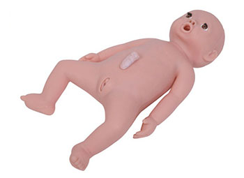 婴儿护理模型