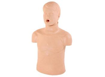 高级成人气道梗塞及CPR模型,梗塞训练模型