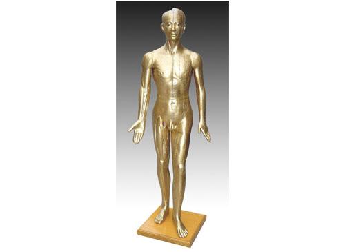 针灸铜人模型178CM
