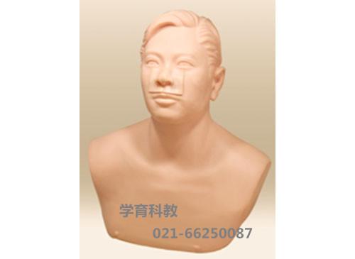 上颌窦穿刺训练模型