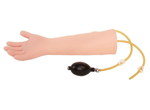 高级儿童动脉注射手臂模型